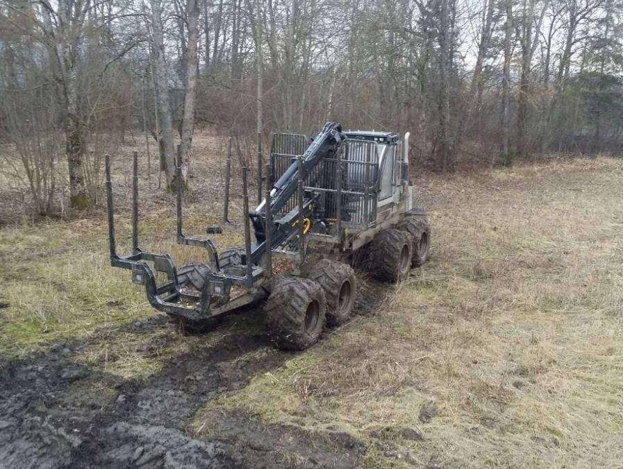 Logset 5FP medvežė