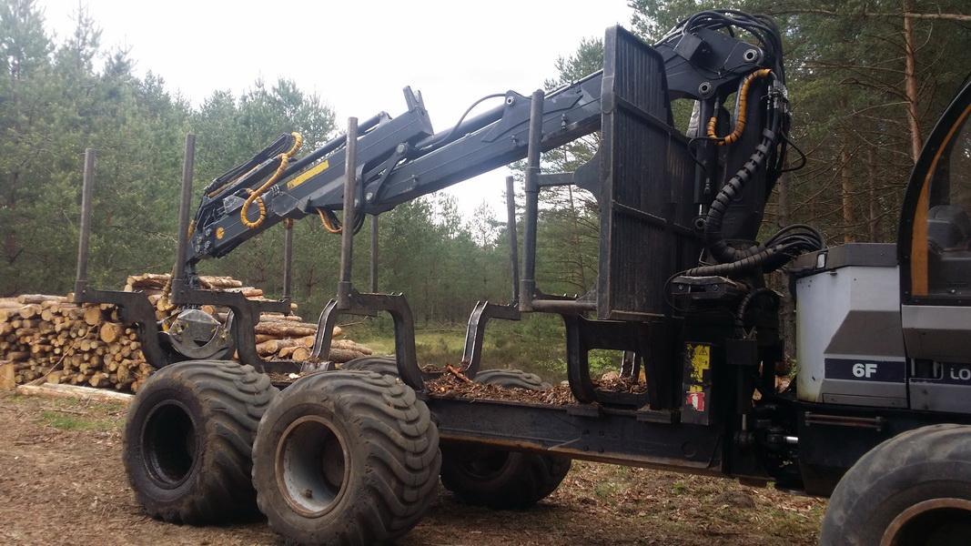 Logset 6F medvežė
