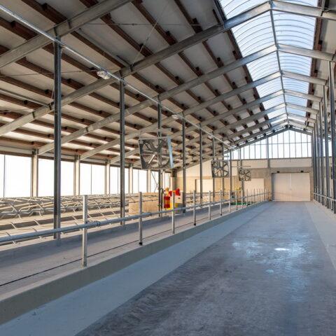 Naujas Griškabūdžio ŽŪB gyvulininkystės kompleksas
