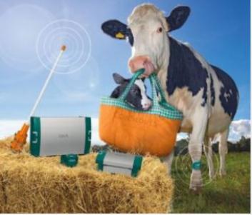 Ūkio valdymo sistemos