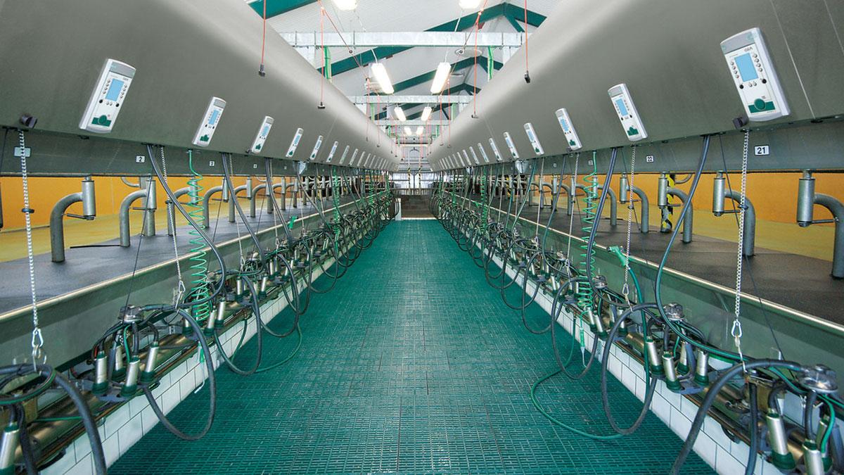 DairyFarming_Global90i_1_1_1200x675px.jpg